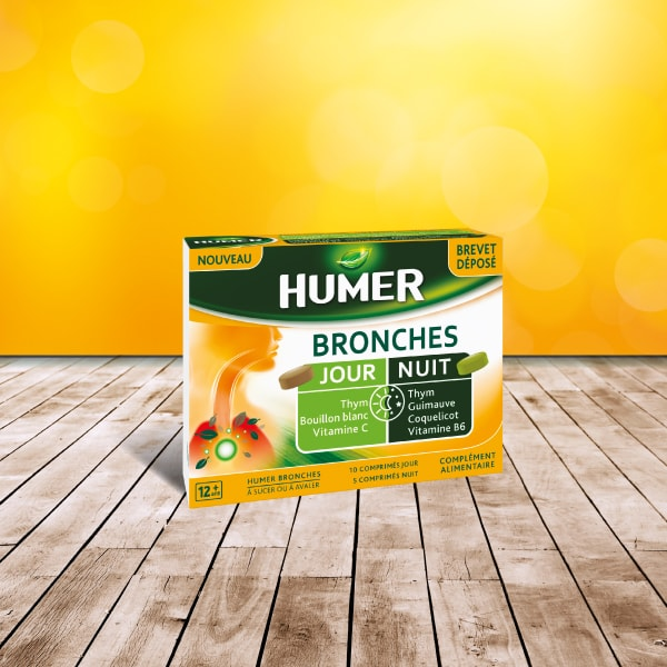 Bronches